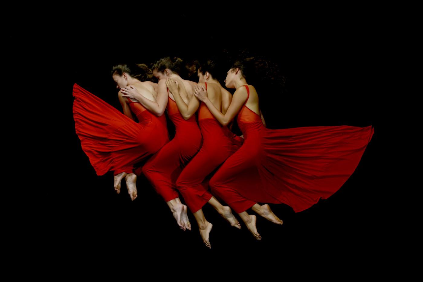 redwings-copy